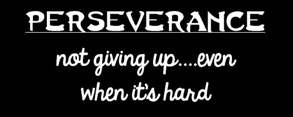 Perseverance-002