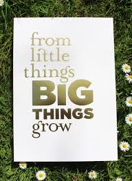 little things big things grow