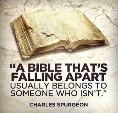 set apart by the word