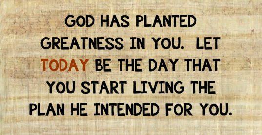 gods-plan-my-plan